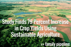 Study Finds 79 Percent Increase in Crop Yields Using Sustainable Agriculture - Family Pipeline