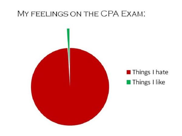 Love Hate Pie Chart - CPA Exam Journey - CPA Zone